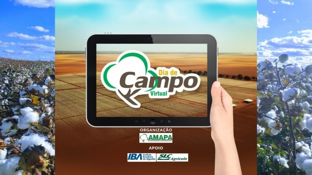 DIA DE CAMPO VIRTUAL AMAPA